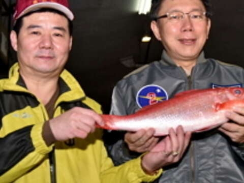 Mayor Inspects Fish, Vegetables, and Fruits Markets