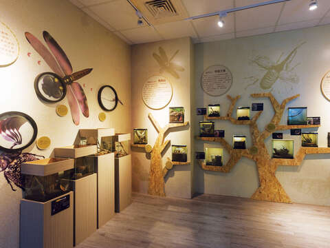 The exhibition in the Taiwan Insect Hall displays and recreates the habitats of various creepy-crawly creatures. (Photo/Taiwan Insect Hall)
