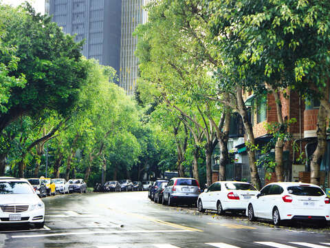 With beautiful trees lined on two sides, Minsheng Community is now a quaint residential area in Songshan District.