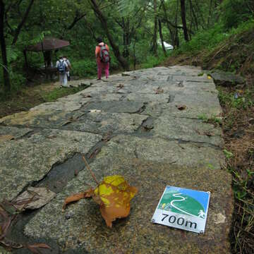 Nangang Mountain System: Lishan Bridge Entrance Hiking Trail